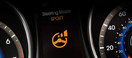 Driver Selectable Steering Mode (DSSM)